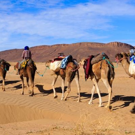 Christmas in Morocco - 8 days