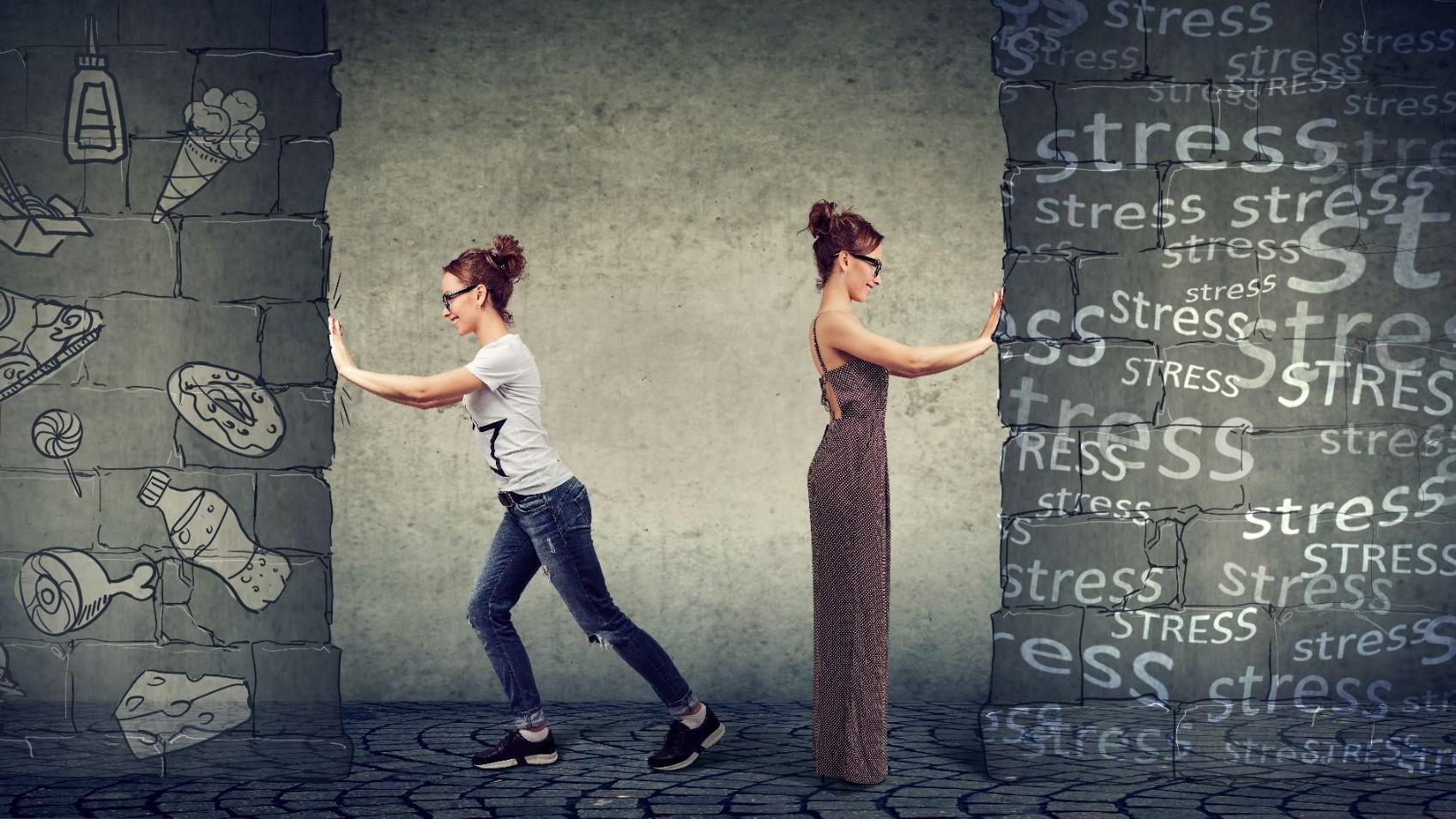 Représentation de la formation : PEC02 - Stress et comportement alimentaire