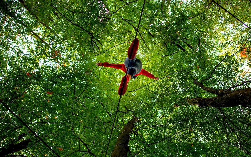 Bild på lindansare tagen underifrån under trädkronorna i skogen. Cirkuskompaniet Naked Ape uppträder i Botkyrka med föreställningen Naturbalans.