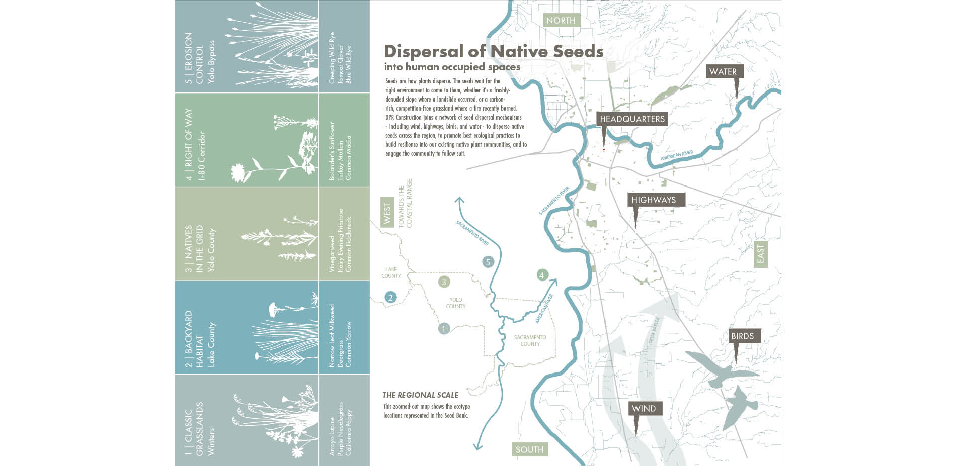 Dispersal of Native Seeds
