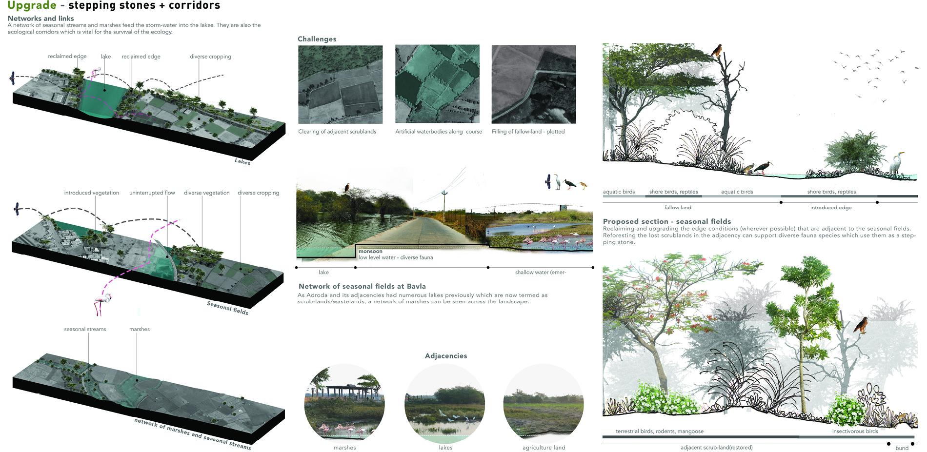 Upgrade - stepping stones + corridors