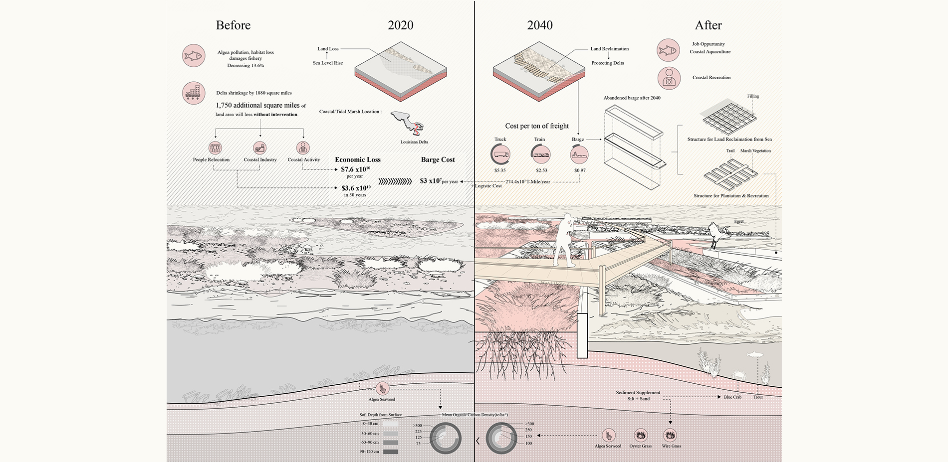 Before and after restoration of coastal marshes
