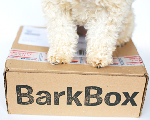 barkbox11