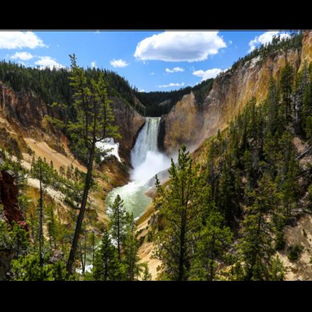 Yellowstone Winter Wonderland - 2022