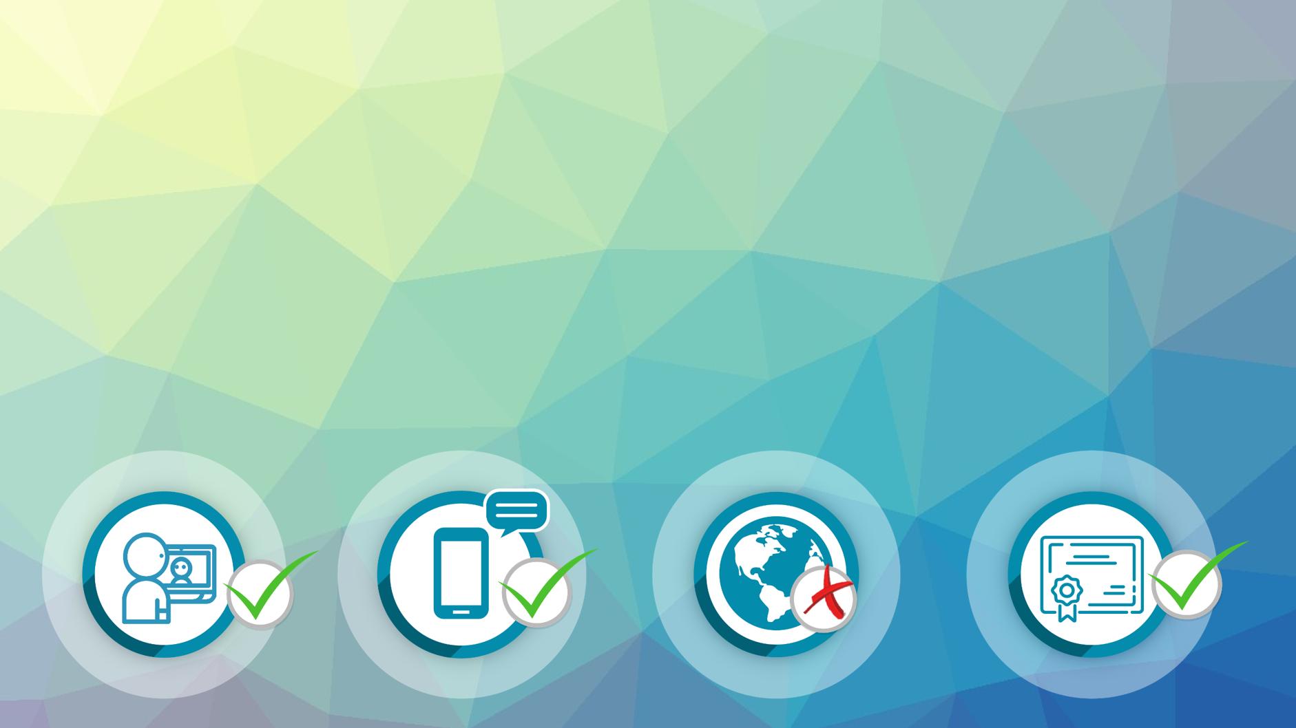 Représentation de la formation : Néerlandais Certification BRIGHT LANGUAGE : 100% cours particuliers en visio (20h) + e-learning