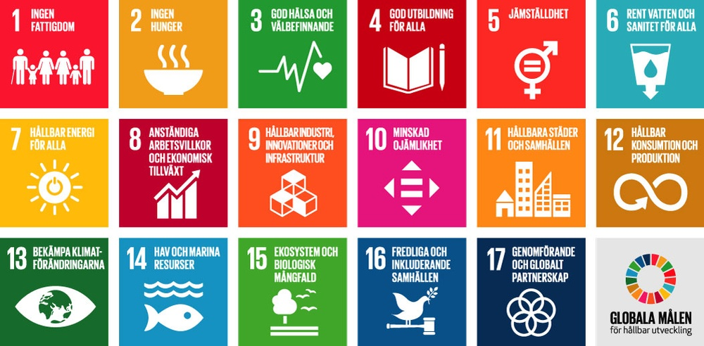 Agenda 2030, FNs globala mål