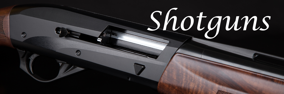 https://www.allamerican-firearms.com/catalog/shotguns?select_out_of_stock=&page=1