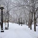 Visit Winnipeg (Video Post)