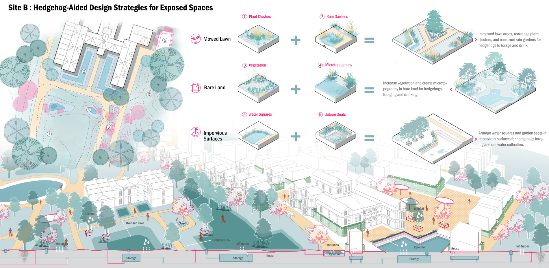 Site B: Hedgehog-Aided Design Strategies for Exposed Spaces