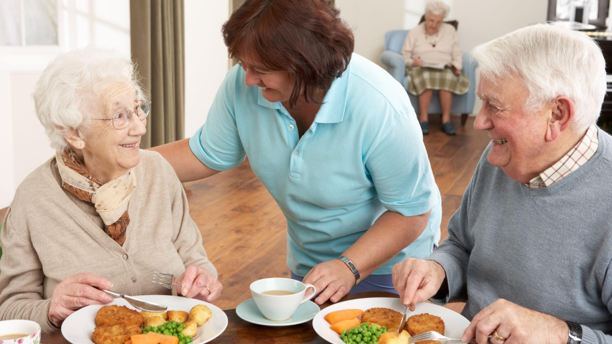 Représentation de la formation : COL03 - Le moment du repas pour les personnes âgées