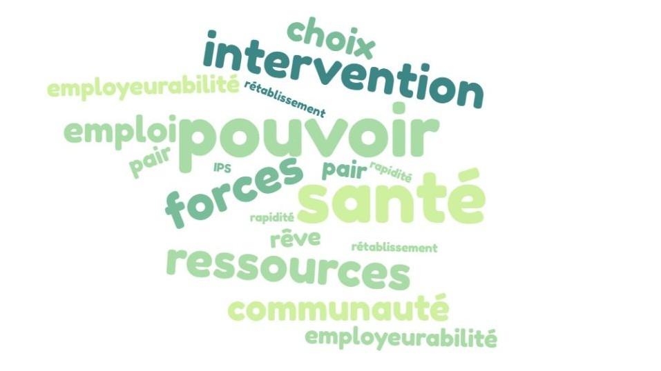 Représentation de la formation : IPS Méthode WORKING FIRST - Journée de sensibilisation et analyse de besoins