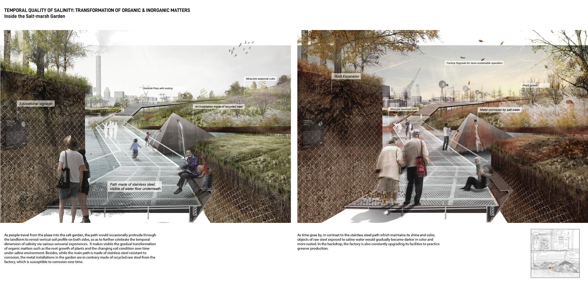 Rockcheck Vision: Salt-marsh Garden