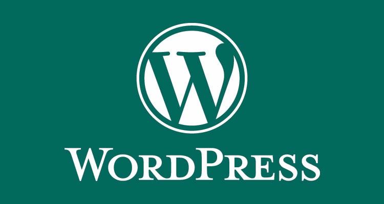 I will customize Wordpress themes and plugins