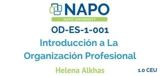 OD-ES-1-001 Introducción a La Organización Profesional