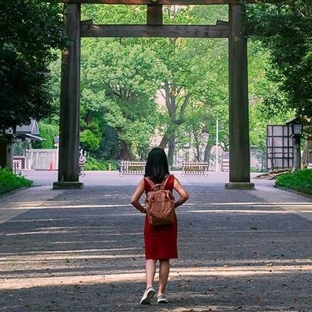 Japan Backpacker Adventure 13D/12N