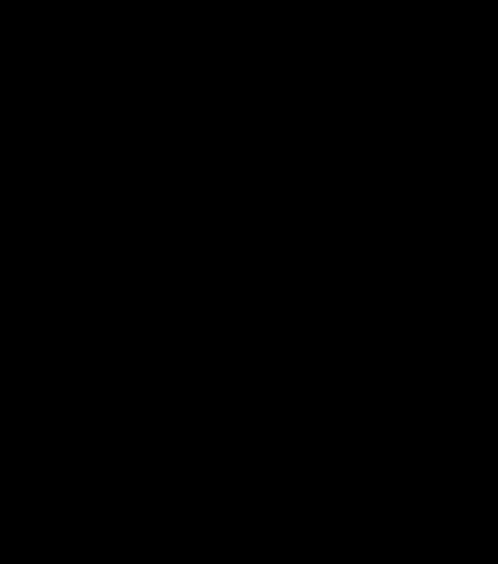 Secondary logo in black
