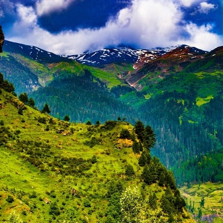 Himalayas tour with Indian family homestay