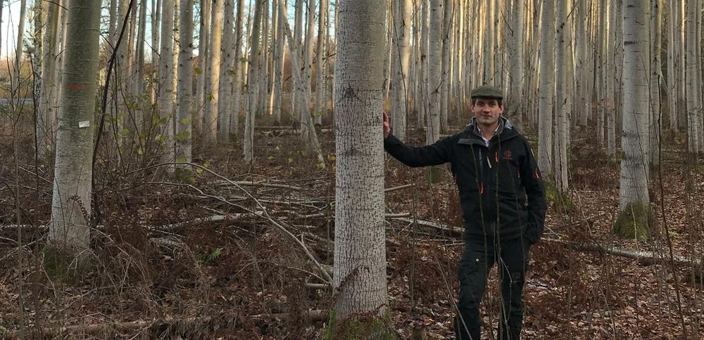 Skogssällskapets skogsförvaltare Gustav af Wåhlberg framför försöksodlingen på Skogssällskapets fastighet Dimbo.
