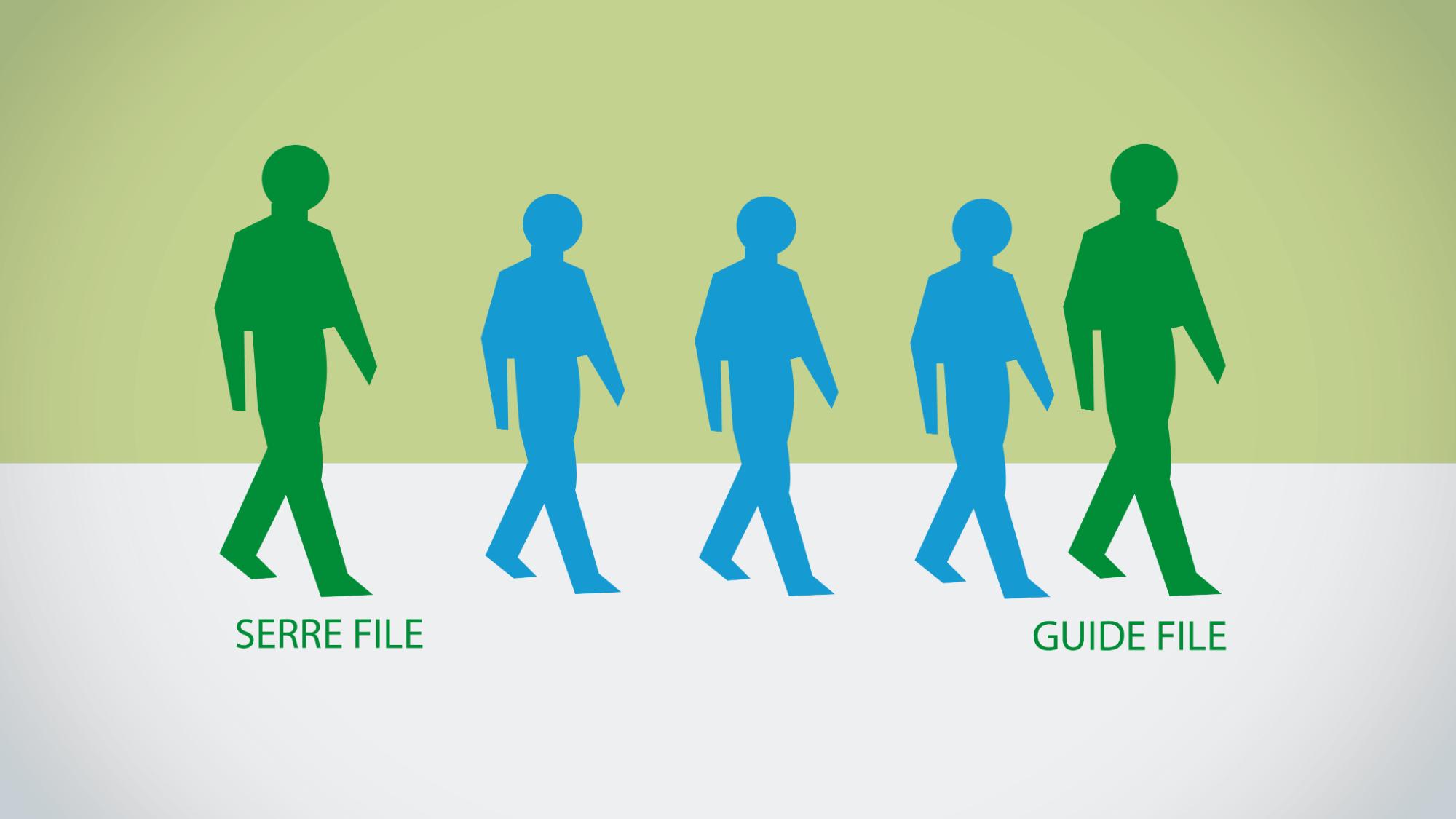 Représentation de la formation : Formation serre file guide file