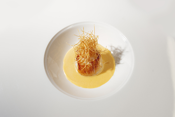Hand-dived scallop, rosemary sauce