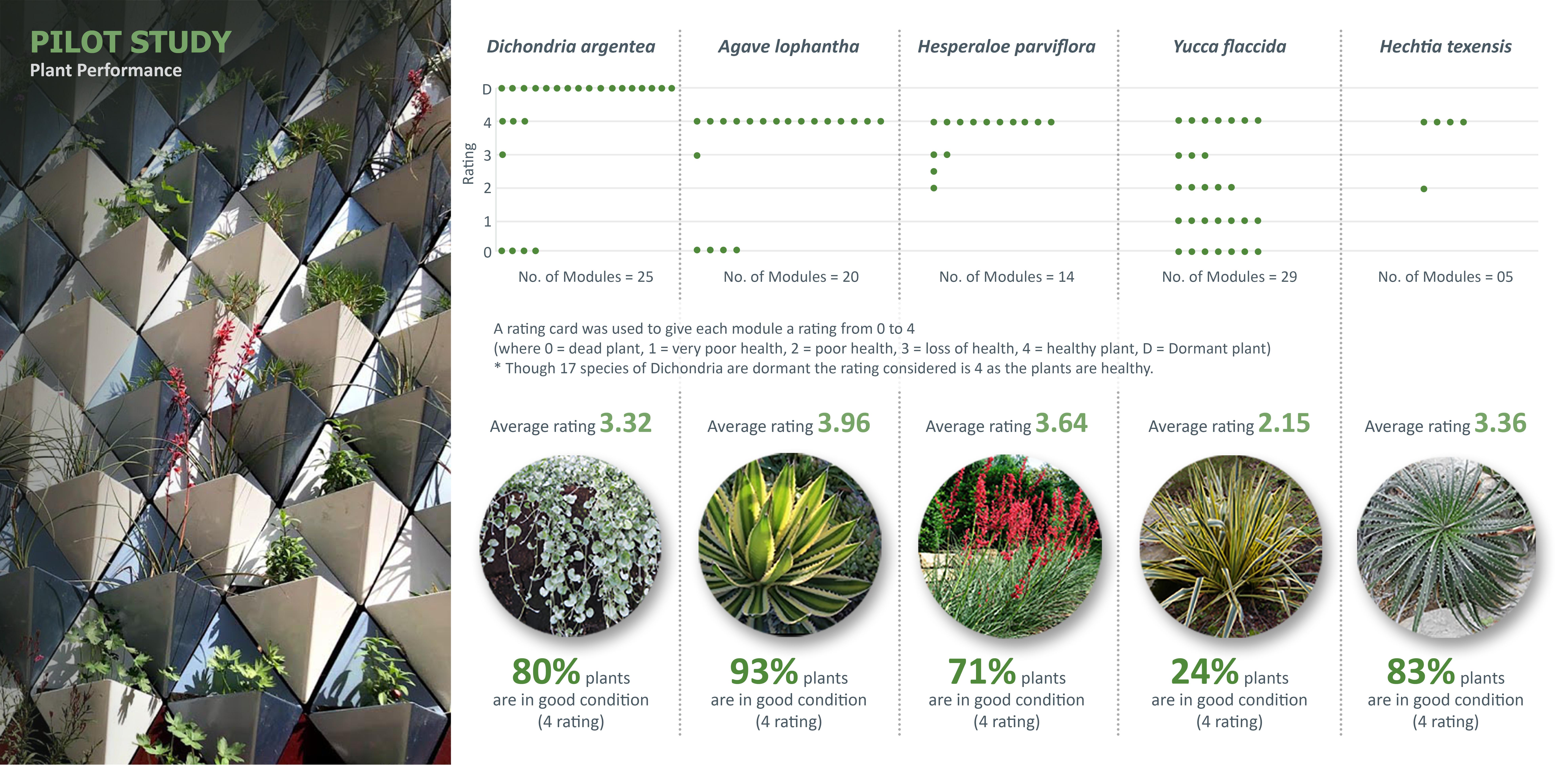 Pilot Study: Plant Performance