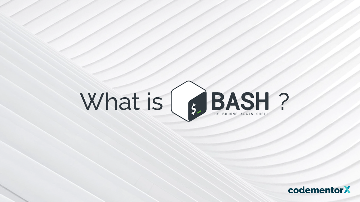 What You Should Know About Your Computer Friend, Bash