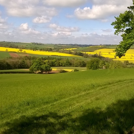 The Cotswolds walking & Hiking tour