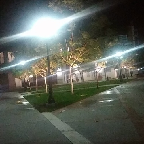 Late night walk around the Residence area after long hours of studying.