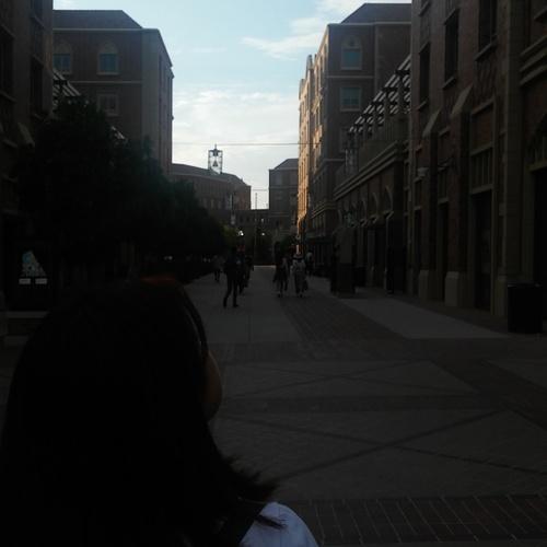 Exploring USC Village.