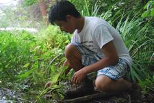 Christodora Summer Ecology Program