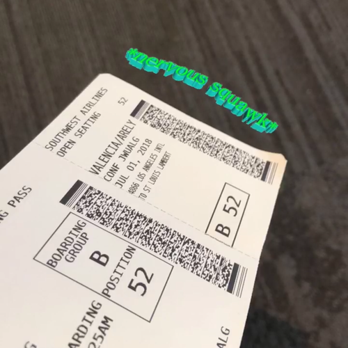 Airplane Ticket to WUSTL