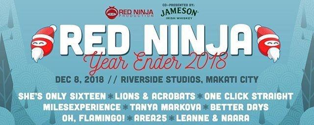 Red Ninja Year Ender 2018