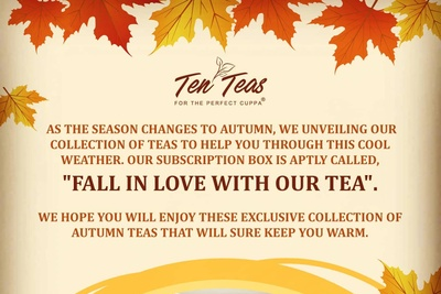 Eco-Friendly Ten Teas Explorer Box Photo 2