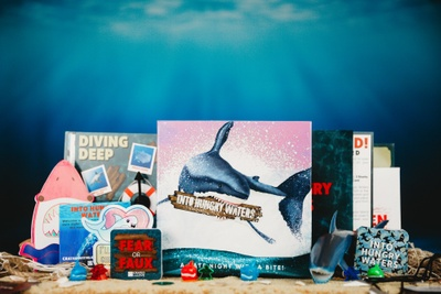 A book with a shark on it, a picture book titled Diving deep, coasters with phrases like into hungry waters, at a beach.