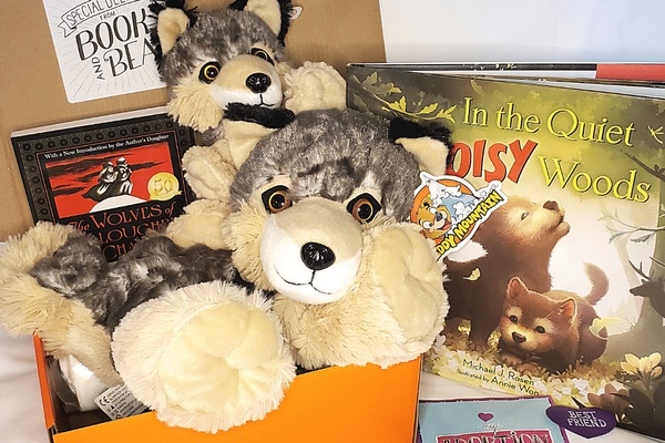 Book and Bear Box Photo 1