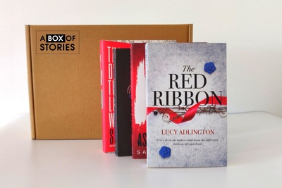 Young Adult (YA) Monthly Surprise 4 x New Book Box Photo 2