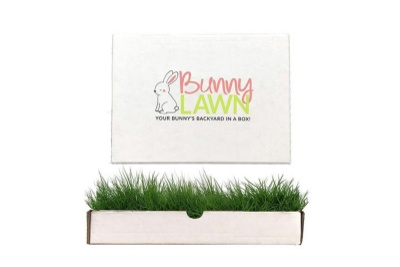 BunnyLawn Photo 1