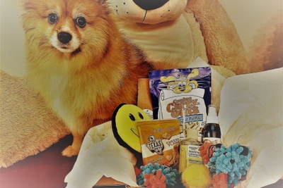 Pet Surprise Monthly Box  Photo 1