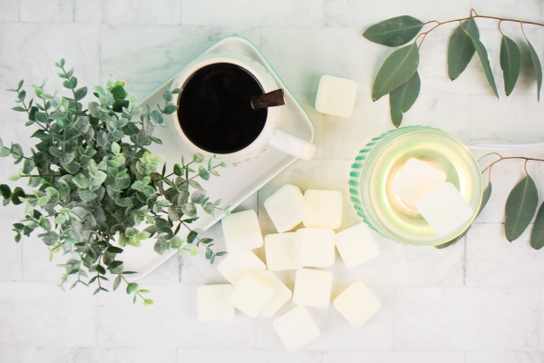 Several white wax melts from a Freshcutky subscription box. A couple on  a warmer next to eucalyptus leaves and coffee.
