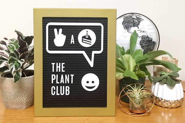 A sign that says The Plant Club, surrounded by various small potted plants.