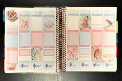 Coco and Opal Design Planner Sticker Subscription Photo 2