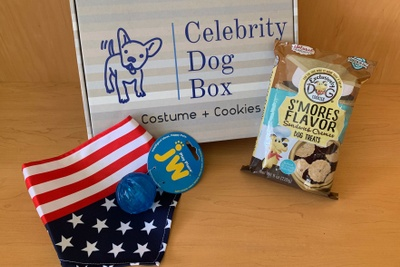 Celebrity Dog Box & Bark Bandanas Photo 3