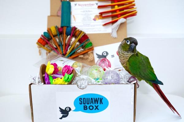 Squawk Box Photo 1
