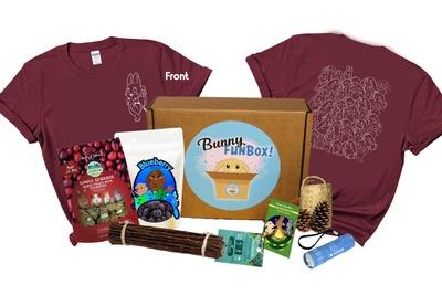 Bunny FunBox Photo 3