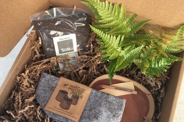 Mi caja de jardín