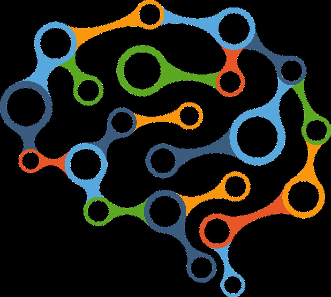 Brain cognition diagram
