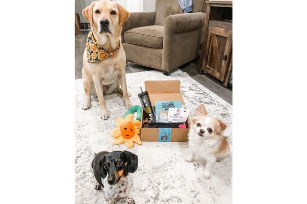 Dog Mom Box Photo 1
