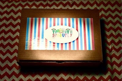 Sproutly Kid Box Photo 3