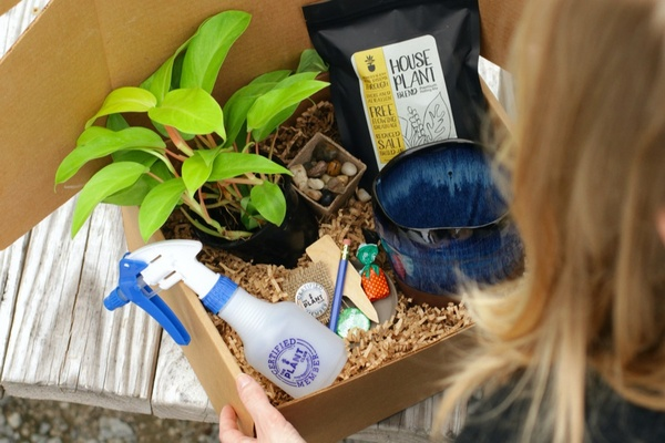 Gifts for Mom: The Plant Club