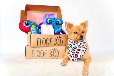 Floof Box Photo 1